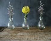 Vintage Set Glass Bud Vases