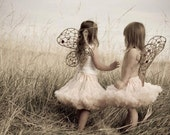 S/M  Custom Fairy Wings Natural Colors Party, Photo Prop or Childplay