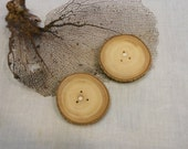Large Wood Button Tree Slice 2.5 inches