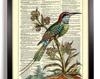 Pensive Hummingbird, Home, Kitchen, Nursery, Bath, Office Decor, Wedding Gift, Eco Friendly Book Art, Vintage Dictionary Print 8 x 10 in.