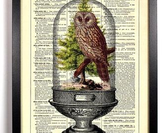 Owl Terrarium, Home, Kitchen, Nursery, Bathroom, Office Decor, Wedding Gift, Eco Friendly Book Art, Vintage Dictionary Print, 8 x 10 in.
