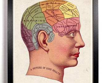 Phrenology Antique Illustration, Home, Kitchen, Bath, Dorm, Office Decor, Wedding Gift, Housewarming Gift, Unique Holiday Gift, Wall Poster