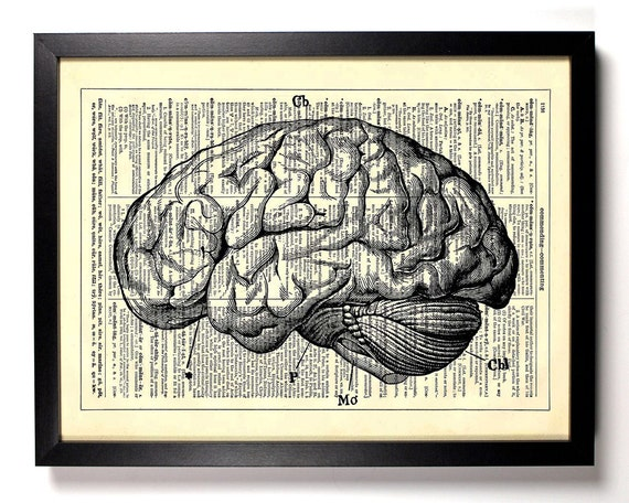 Anatomy Brain, Home, Kitchen, Nursery, Bath, Office Decor, Wedding Gift, Eco Friendly Book Art, Vintage Dictionary Print 8 x 10 in.