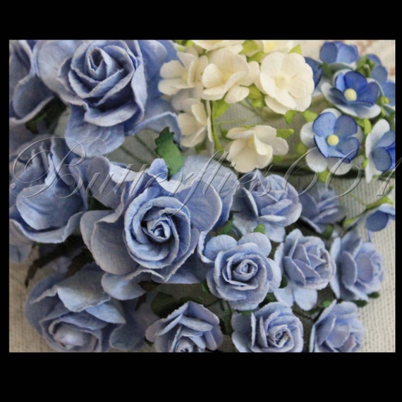 Items similar to 35 Mixed Baby Blue Gardenia /Baby Blue ...