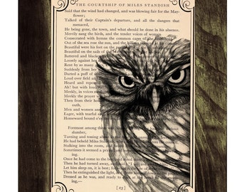 Owl Dictionary page book art print Black Owl Print on Vintage Book altered art dictionary page illustration ANI030