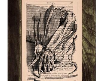 Vintage Book Print Dictionary Anatomy arm studio Page Print- Book print  Antique Print on Vintage Book art BPSK027