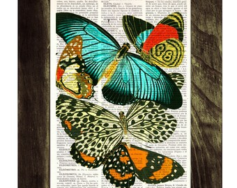 Butterflies collage Dictionary Book Print - Altered art on upcycled book pages BPBB031