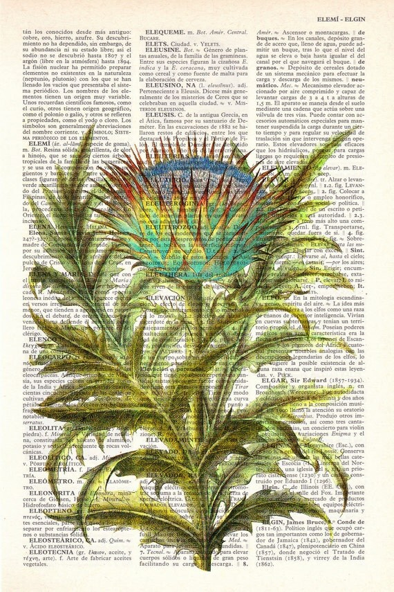 Summer Sale Vintage Book Print Dictionary or Encyclopedia Book print Cardoon flower Botanical studio print on Vintage BFL071