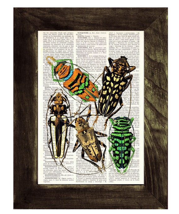 Beetles Dictionary Book Print - Altered art on upcycled book pages BFL024