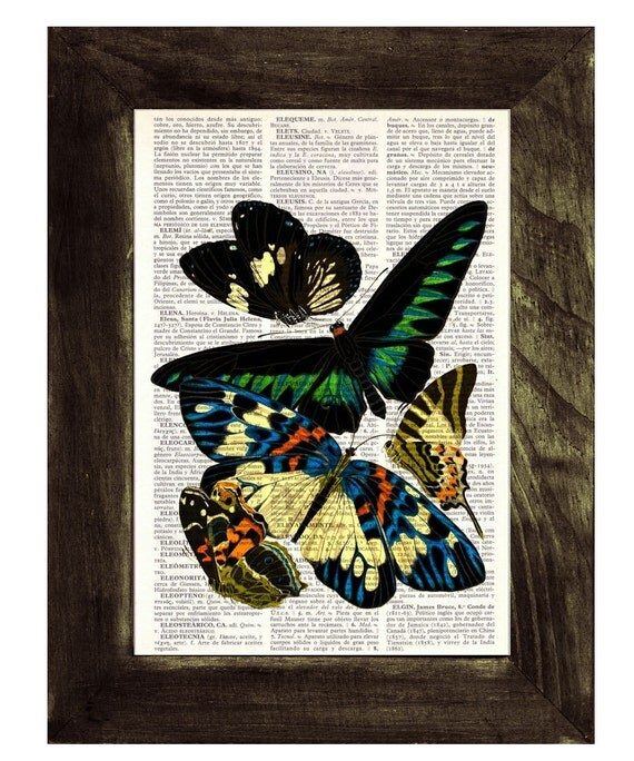 Butterflies Dictionary Book Print - Altered art on upcycled book pages BFL021