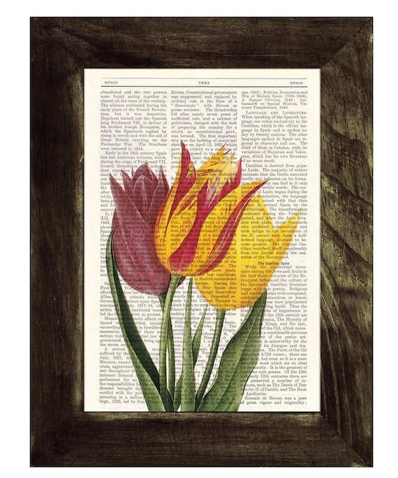 Summer Sale Vintage Tulips Dictionary or Encyclopedia Page Print Book print Tulip botanical studio print on Book BFL064
