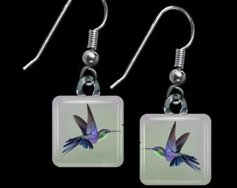 Hummingbird Earrings(ECuAn7.4)