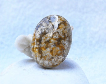 BEAUTIFUL Petrified Fossil Agate - 30.92 Carats (Nice Stone Tho!)