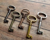 Multi-Color Skeleton Keys - Set of 5