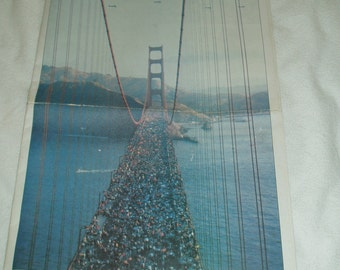 The San Fransisco Chronicle, Special Report, The Great Party.