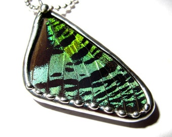 Real Sunset Moth Wing Pendant