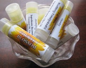 Lip Balms - Pick 3 made with Beeswax