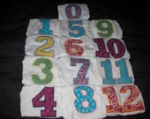 Monthly Onesies (0-12) - Girl, Boy or Neutral Sets