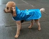 "Dog  raincoat ""the city slicker'"