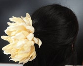 Barrette, Large Cream Mum Flower Attached to a Medium French Hair Barrette