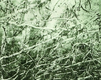 Green Vines Matted Solarprint