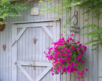 Garden Shed, Penmoken Park, Lexington, KY, 5 x 7 fine art photo, signed