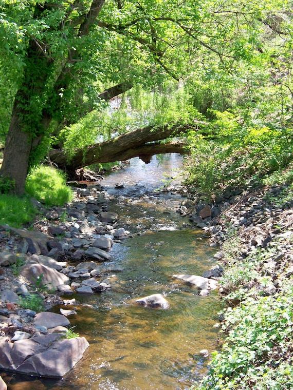Stream in Scottsville, VA, 8 x 10 fine art photo, signed