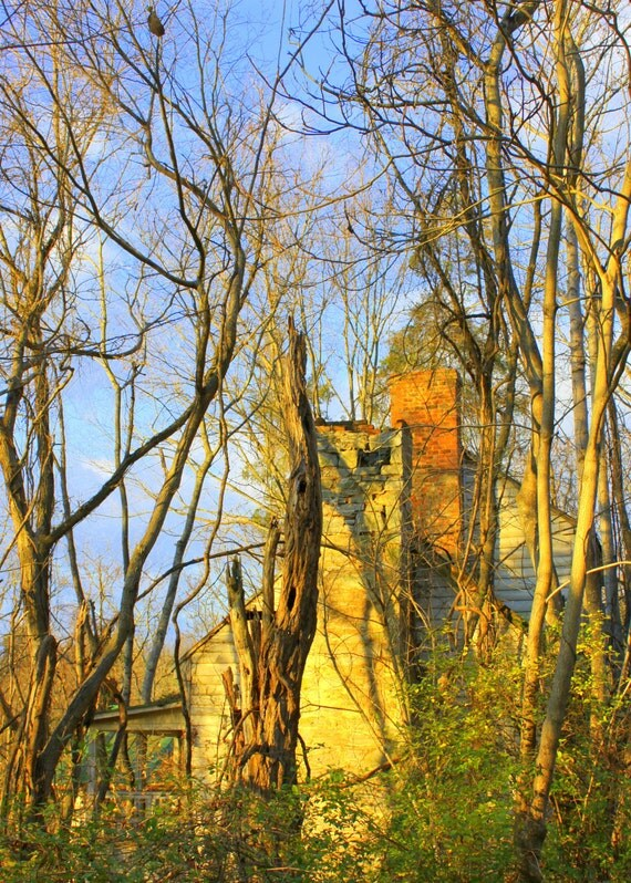 Old Abandoned House, near the Natural Bridge in Virginia--5 x 7 fine art photo, signed