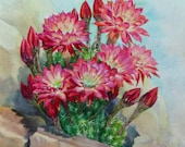 Watercolor Painting of Cactus Flowers Botanical Plein Air Painting, Framed Cactus Painting by Elena Roche
