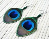 Peacock Eye Feather Earrings - Neatly Trimmed, w/ Green Wire