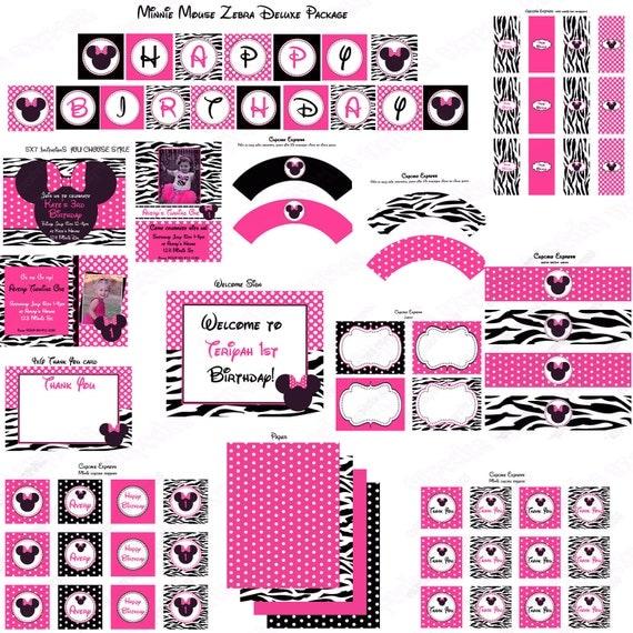 Items Similar To DIY Minnie Mouse Pink Zebra Deluxe