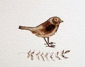 Watercolor bird illustration sepia