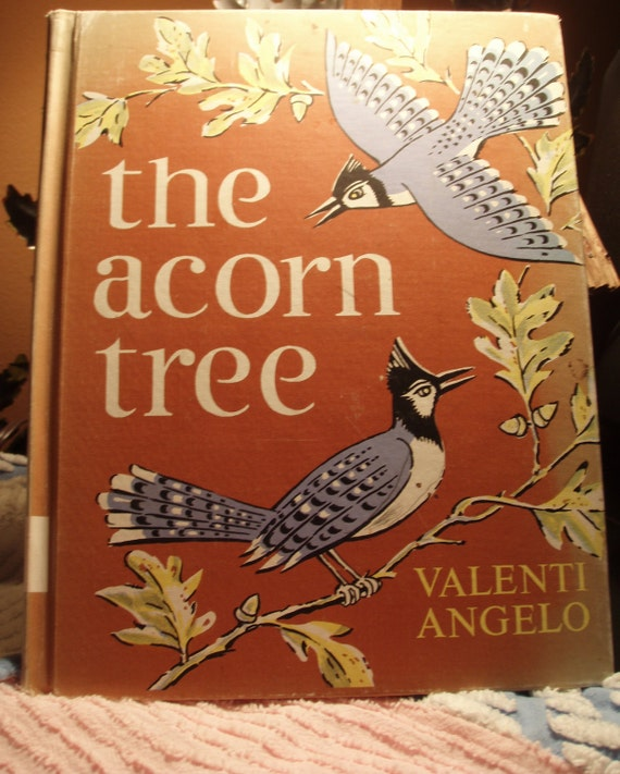Vintage Children's book The Acorn Tree birds Collectible