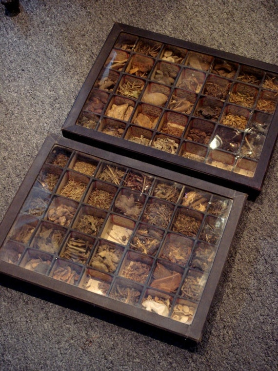 Old Medicinal Herbs and Roots, c. 1930's Pair of Pharmaceutical Trays