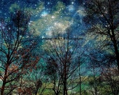 Celestial Fantasy Forest & Stars Night Sky Photography Print, 6x9 + More Sizes, Galaxy, Sky, Trees