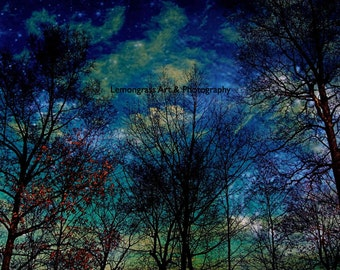 Magical Forest, Celestial Night Sky, Nature Photography, Fine Art Print, Clouds, Trees, Metallic Paper, Blue Wall Art, Home Decor