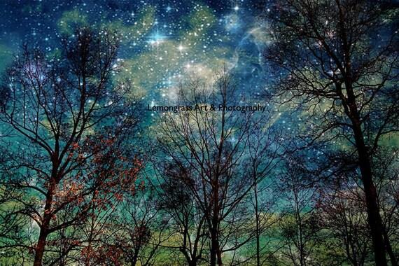 Celestial, Fantasy Forest, Stars, Night Sky, Photography Prints, 6x9 + More Sizes, Blue, Galaxy, Sky, Trees, Metallic Finish, Home Decor