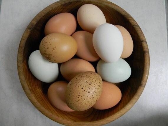 Two dozen Chicken eggs blown and clean