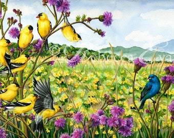 Illustration Art Print of Birds in Meadow 13x19