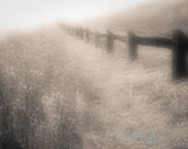 Soft nature photo of grasses, fence & path in the hills near San Francisco, sepia toned, 8.5x11