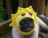 Spread a Little Sunshine Dog / Cat  Hat / Made To Order