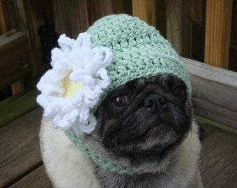 Loves Me Loves Me Not Daisy Flower Dog Hat / Made to Order