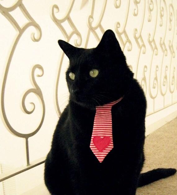Heartbreaker - Pet Tie