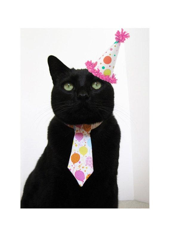 Cat Tie - The Big Birthday Bash