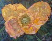 poppy painting, flower painting, poppy, large painting, large oil painting, oil painting, painting, original oil paintings, large paintings