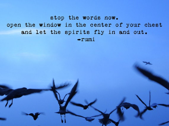 Flying Birds with Rumi Quote