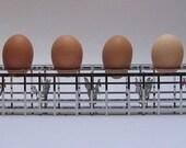 Chicken Run - steel egg box
