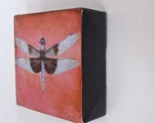 Dragonfly on peachy pink mini painting