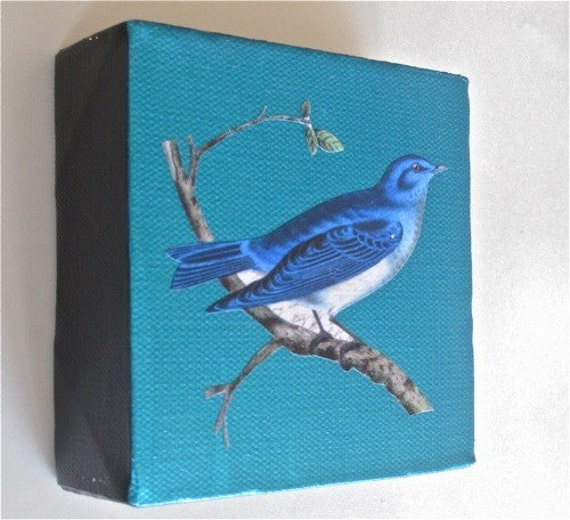 Blue bird mixed media mini painting on canvas