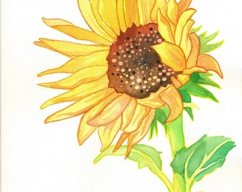 Sunflower Print (Flower Power Watercolor Painting in Yellow, Gold, Green and Brown Flower)